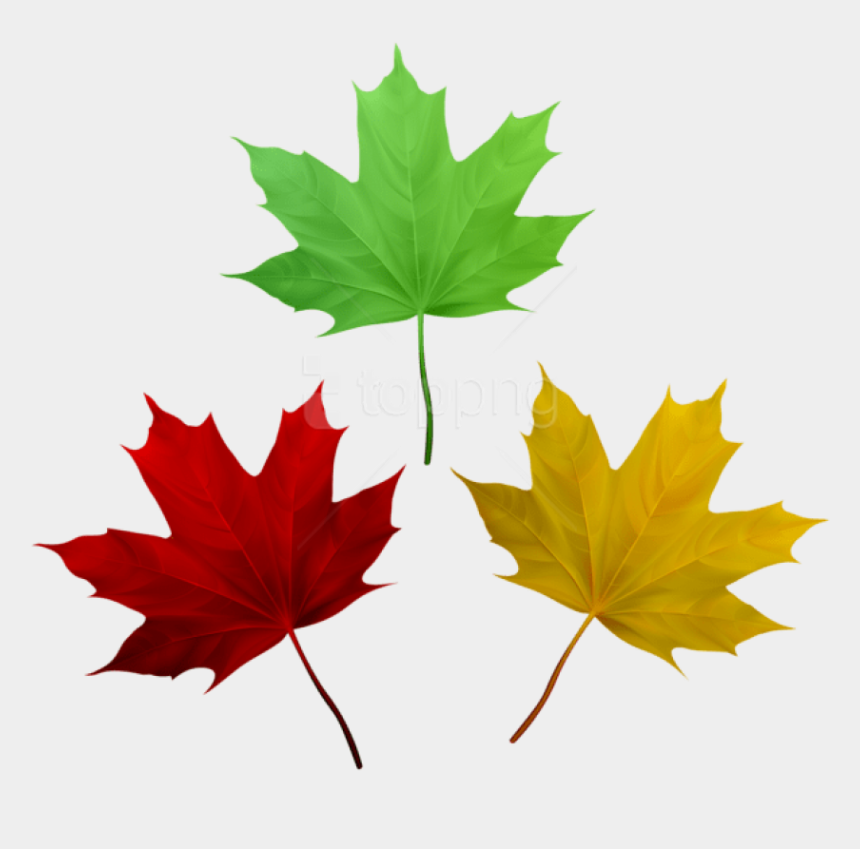 free clipart autumn leaves, Cartoons - Free Png Download Fall Leaves Set Clipart Png Photo - Clip Art