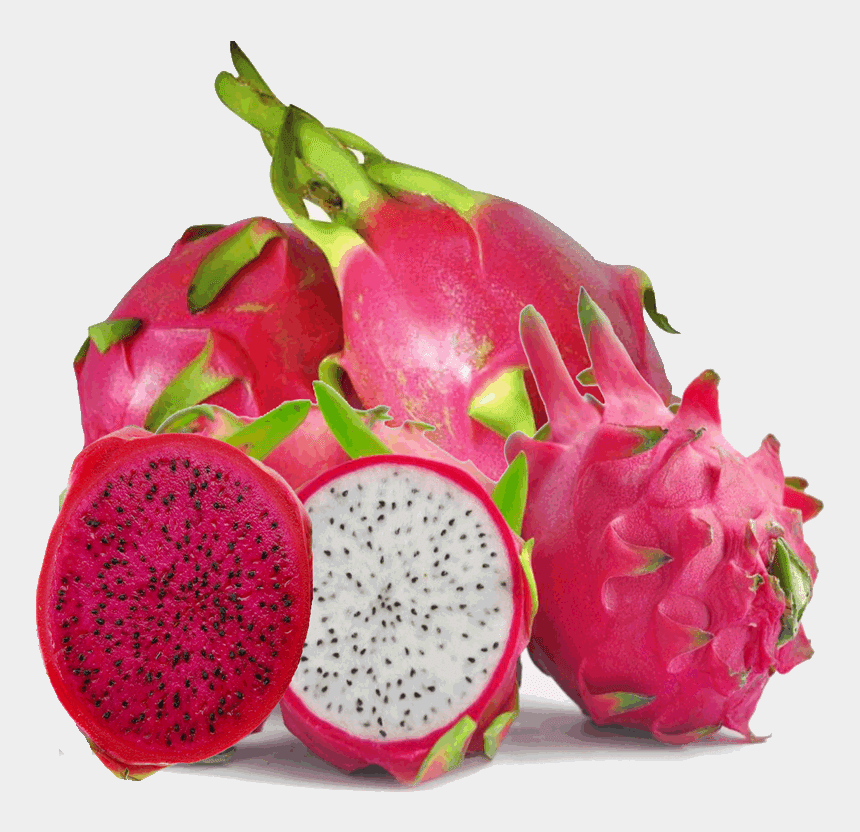 dragon fruit clipart, Cartoons - Dragon Fruit Pictures - Transparent Dragon Fruit Png