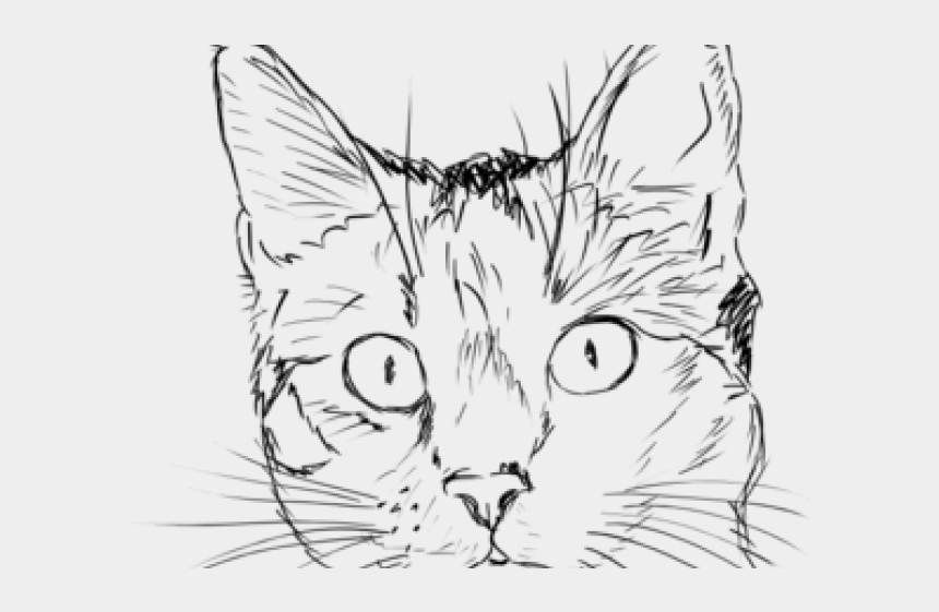 cat head clipart, Cartoons - Drawn Cat Face - Sketch Cat Face Drawing