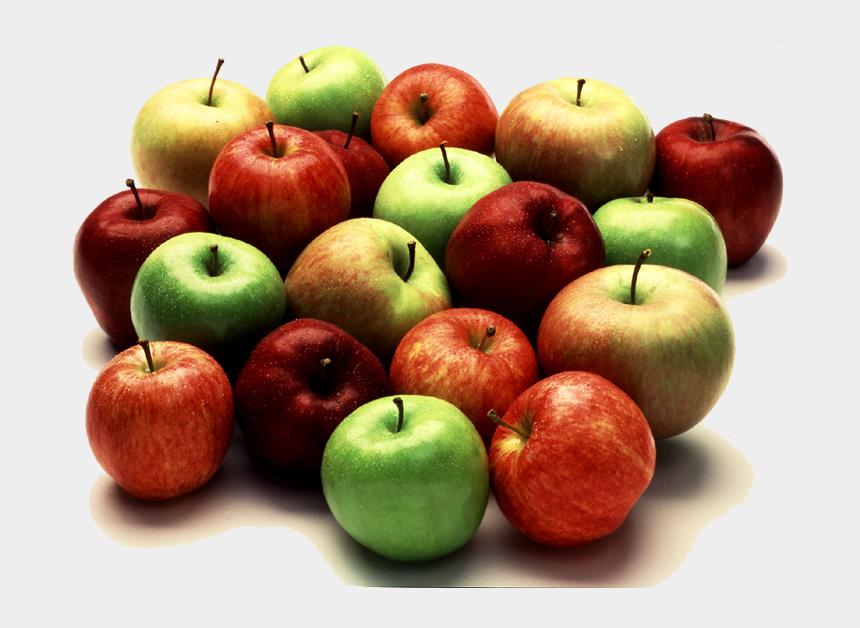 apple fruit clipart, Cartoons - Lot Apples