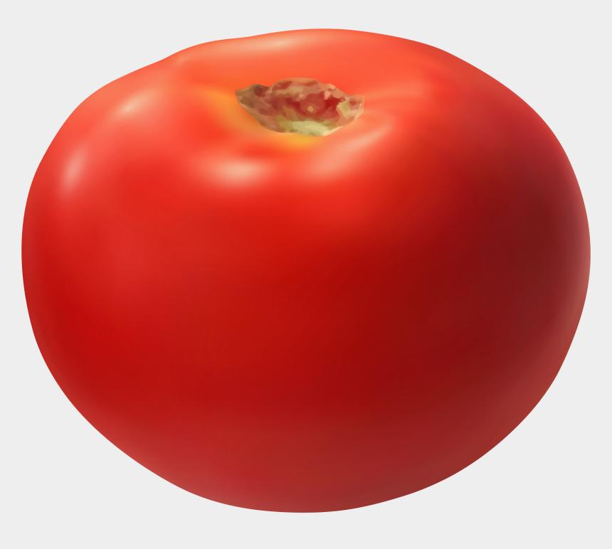 vegetable basket clipart, Cartoons - Vector Vegetables Realistic - Plum Tomato