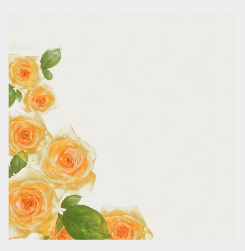 rose border clipart, Cartoons - Watercolor Rose Border Floral Albums Download Free - Yellow Watercolor Flower Border