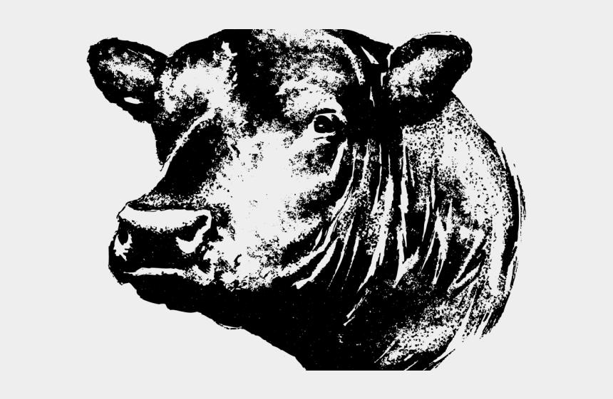 dog head clipart, Cartoons - Head Clipart Angus - Angus Bull Head Silhouette