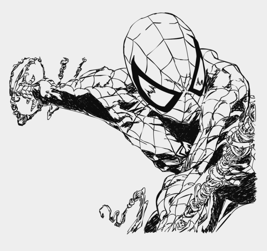 spiderman clipart black and white, Cartoons - By Electric Meat - Spider Man Web Drawing