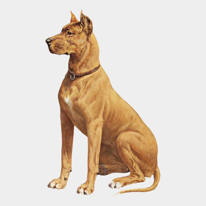 great dane clipart, Cartoons - سكرابز كلب