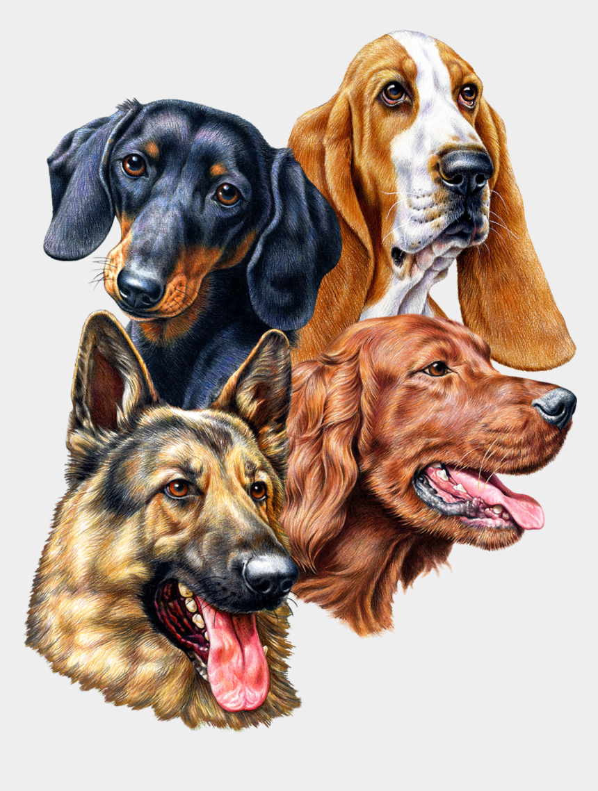 great dane clipart, Cartoons - Great Dane Graphics Offers New Dog Breed Designs January - German Shepherd's Face