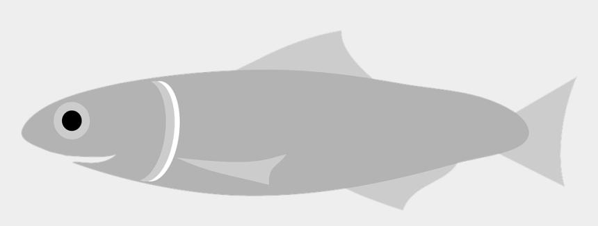 fish food clipart, Cartoons - Anchovy Fish Grey Swim Sea Food Swimming Animal - Gambar Kartun Ikan Teri