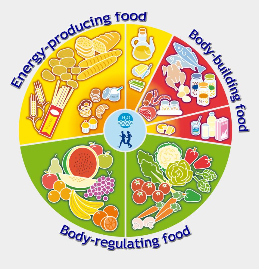 food pyramid clipart, Cartoons - Food Wheel *energy Producting Food *body Building Food - Clinical Nutrition