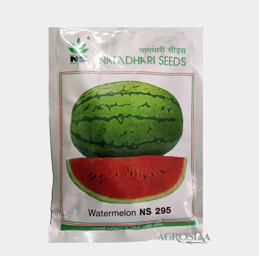 watermelon clipart black and white, Cartoons - Watermelon , Png Download - Watermelon