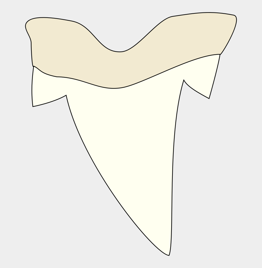 tooth clip art, Cartoons - Simple Shark Tooth Drawing