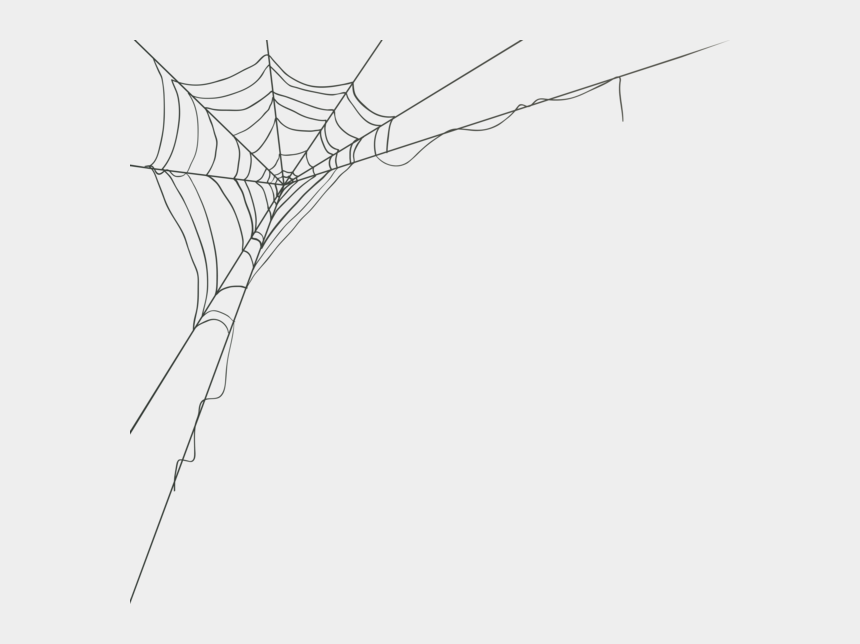 spider web images clipart, Cartoons - Spider Web Clipart - Transparent Background Spider Web Png