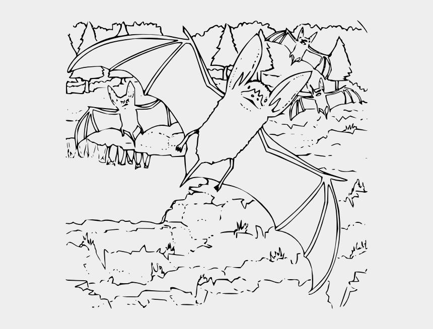 bat clipart outline, Cartoons - Ozark Big Eared Bat Coloring Pages
