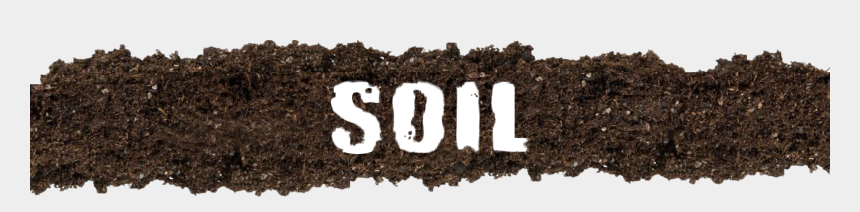 vegetable garden clipart, Cartoons - Looking At The Shelves I Can See That There Are So - Soil Word