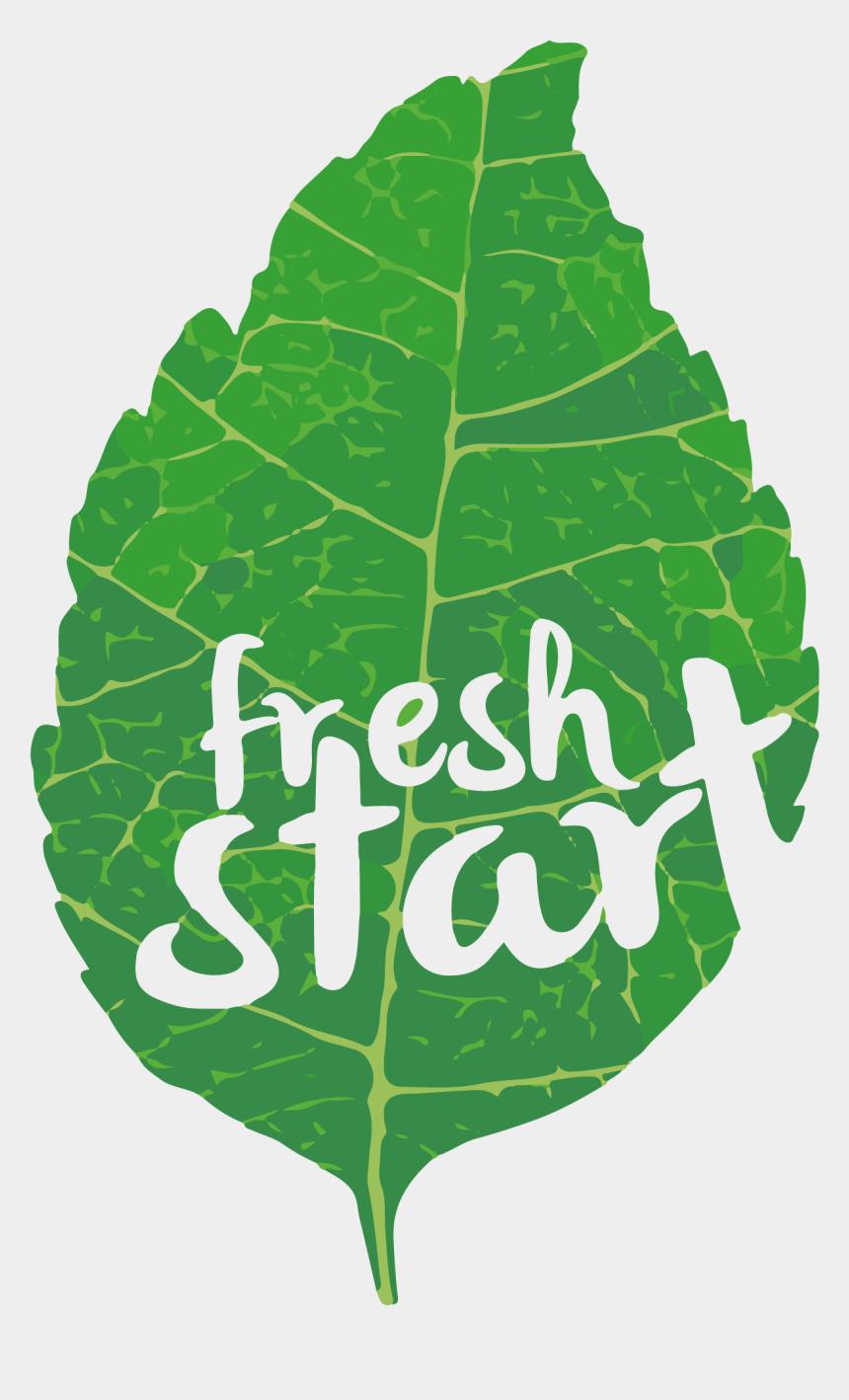 lettuce clipart, Cartoons - Fresh Start New Church Tricities Wa Ⓒ - Collard Greens