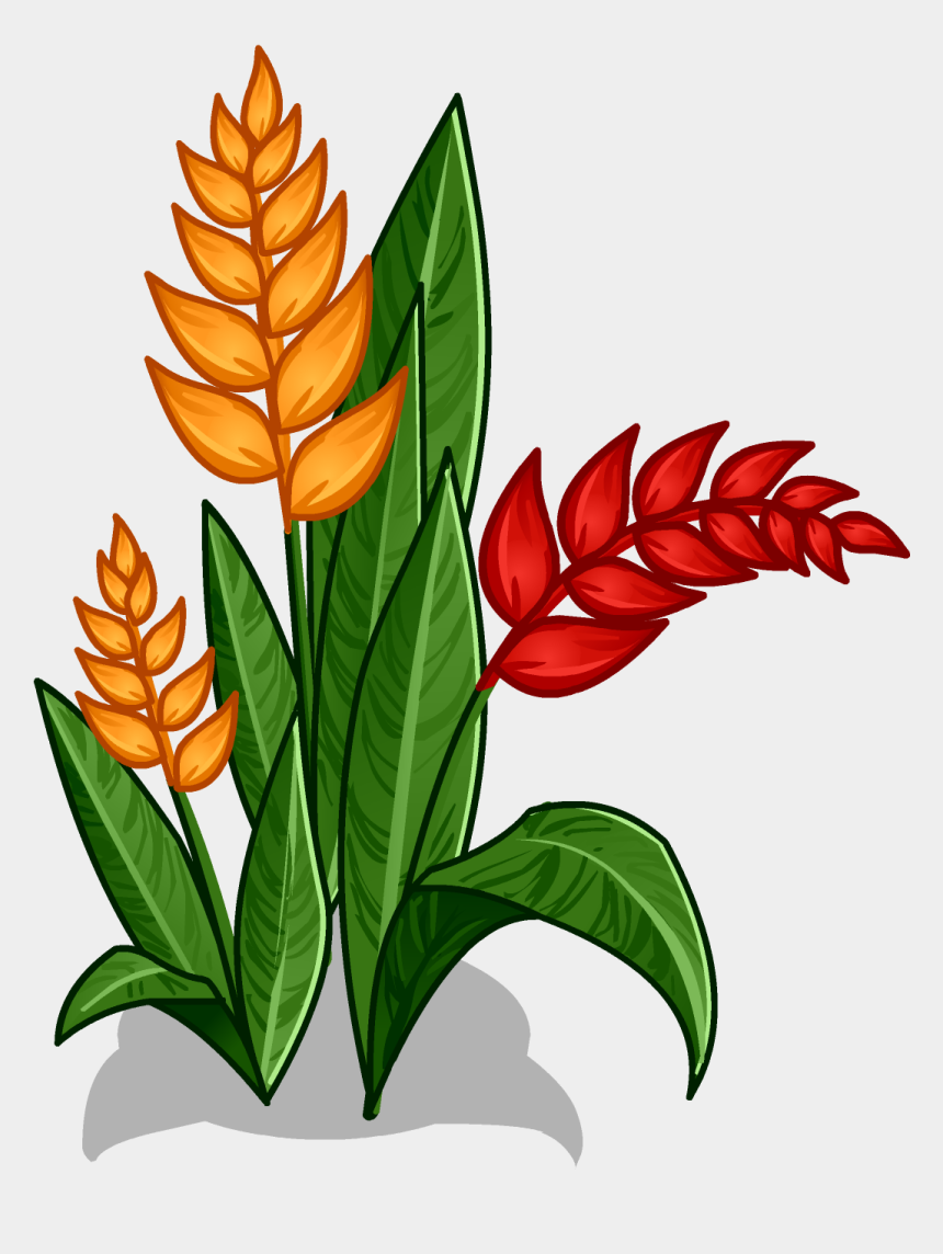 rainforest clipart, Cartoons - Flowers At Getdrawings Com Free For Personal Ⓒ - Amazon Rainforest Plants Drawing