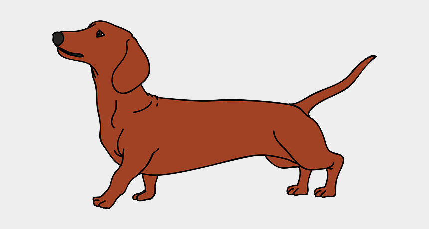 dachshund clipart, Cartoons - Dachshund Png - Christmas Dachshund Dog Vector
