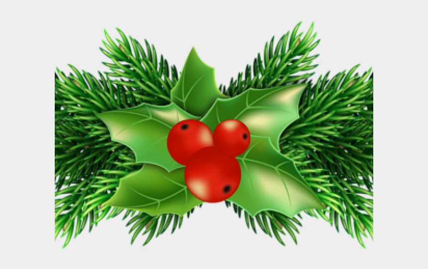 Christmas Holly Clipart Png.Pictures Of Christmas Holly Christmas Holly Png Cliparts