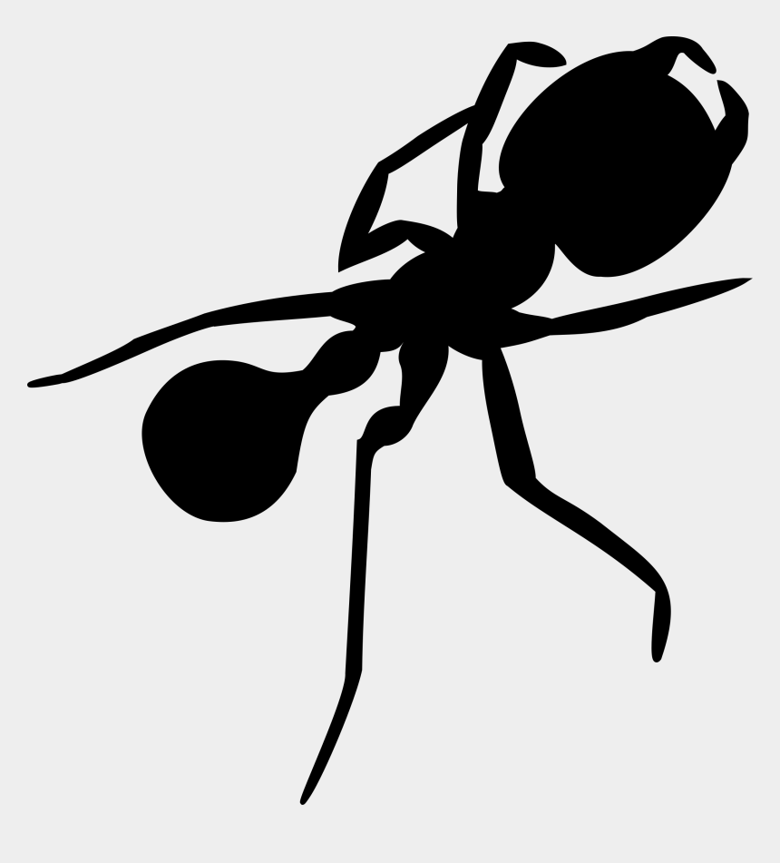 ant clip art, Cartoons - Clip Art Details - Ant Silhouette Png