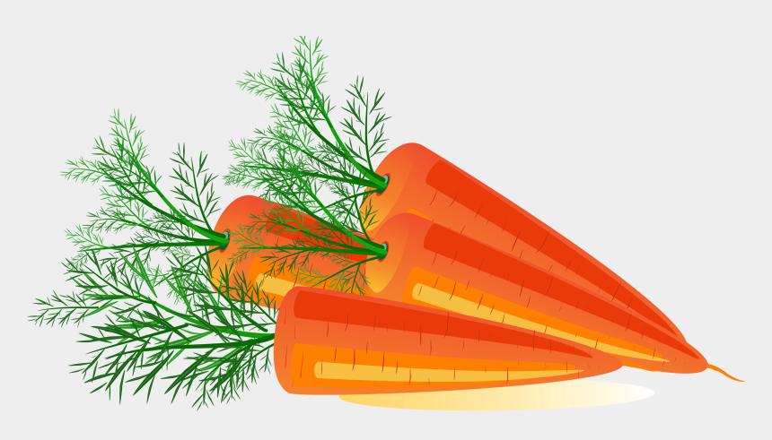 carrots clipart, Cartoons - Carrots Clipart Transparent Background - Transparent Background Carrot Clip Art