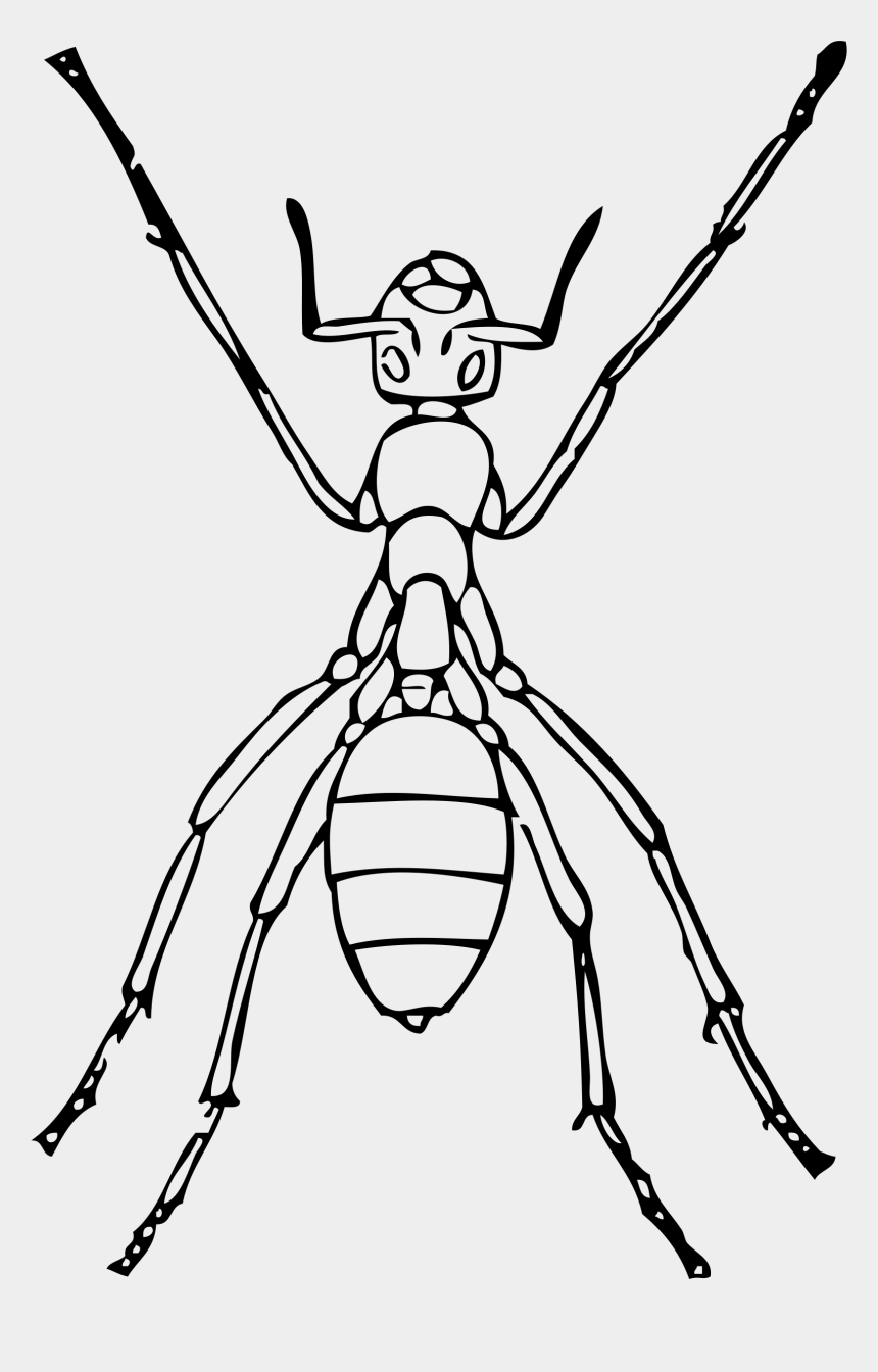 ant clip art, Cartoons - Ant - Outline Of Ant