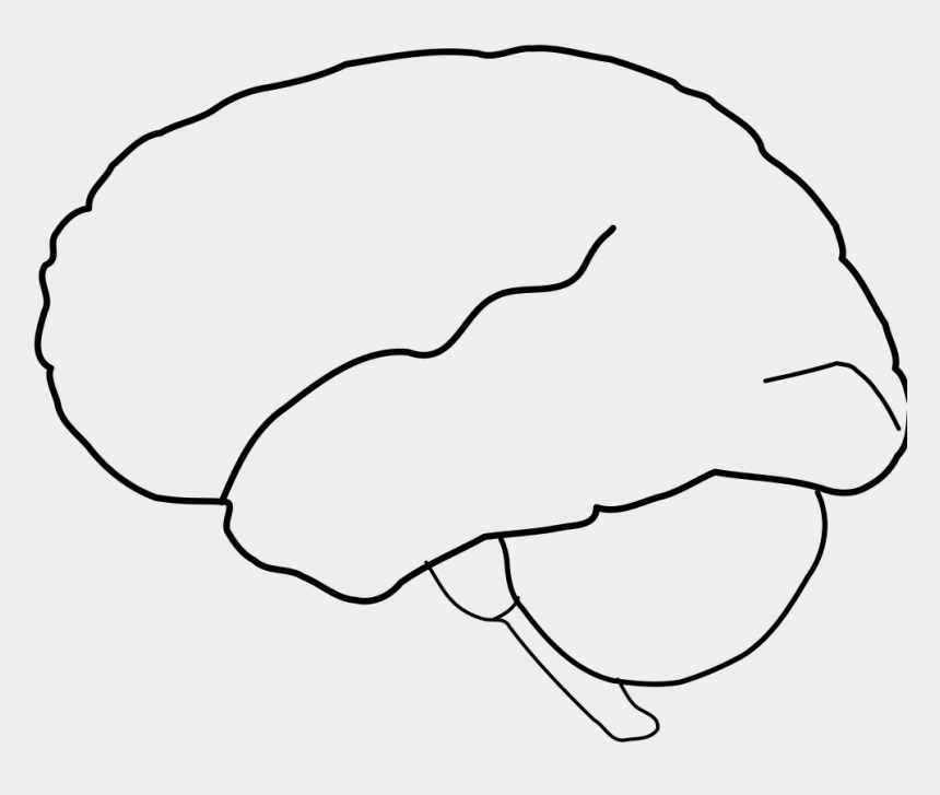 brain clip art, Cartoons - Head And Brain Outline Svg Clip Arts 516 X 597 Px - Portable Network Graphics