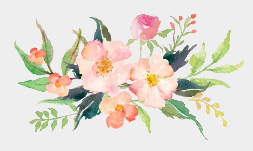 magnolia clipart, Cartoons - Watercolour Watercolor Tips, Watercolor Flowers, Magnolia - Pink Watercolor Flower Png