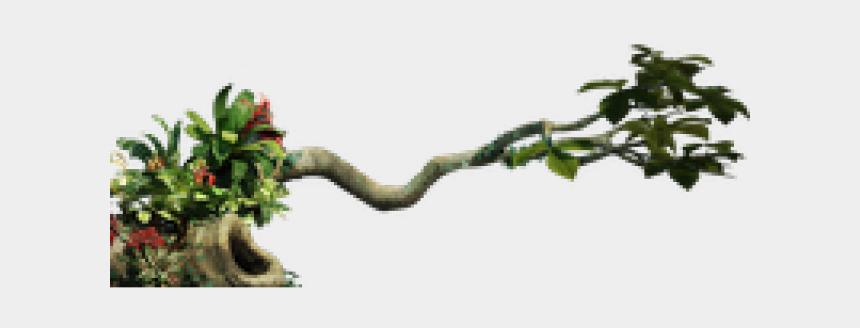 jungle tree clipart, Cartoons - Jungle Clipart Transparent - Jungle Plant Png Transparent