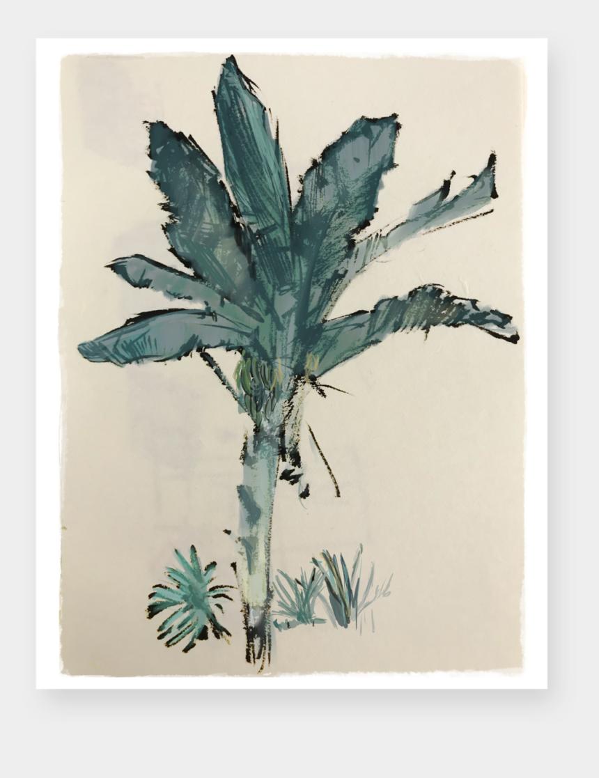 banana tree clipart, Cartoons - Banana Tree Png - Watercolor Paint