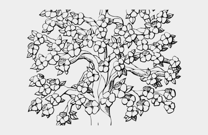 Banyan Tree Clipart Spring Detailed Tree Coloring Page Cliparts Cartoons Jing Fm
