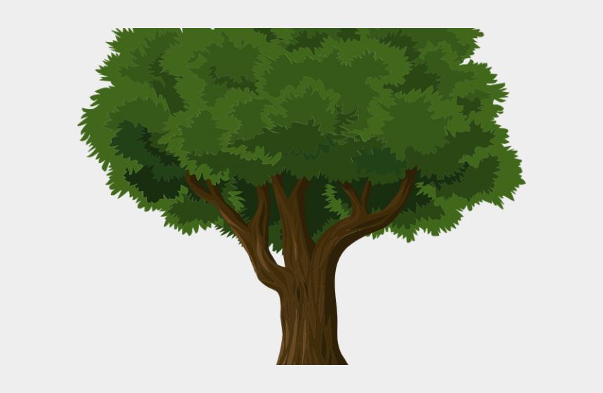 banyan tree clipart, Cartoons - Banyan Tree Clipart Grass Clipart - Illustration Of Trees Png