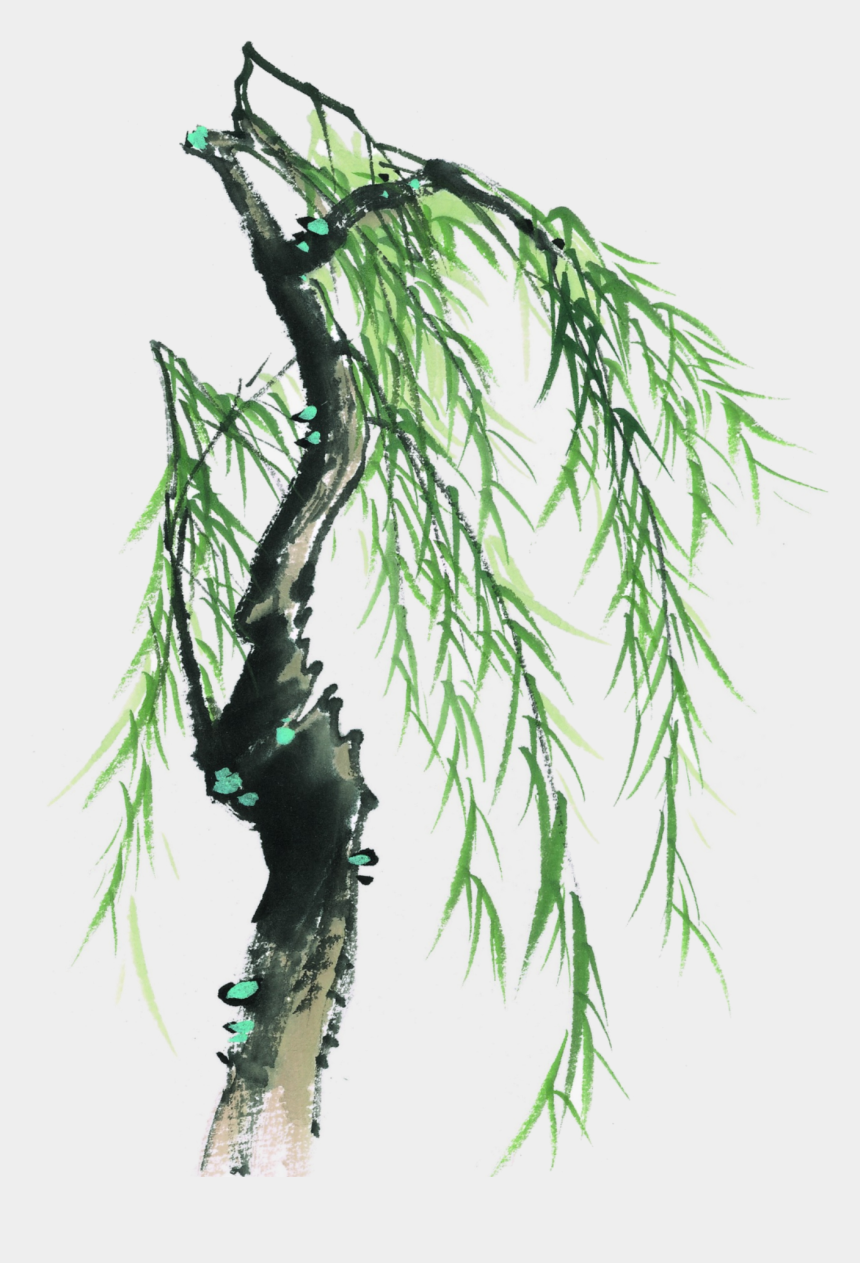 willow tree clipart, Cartoons - This Graphics Is Painted Willow Tree Element Design - 水墨 柳樹
