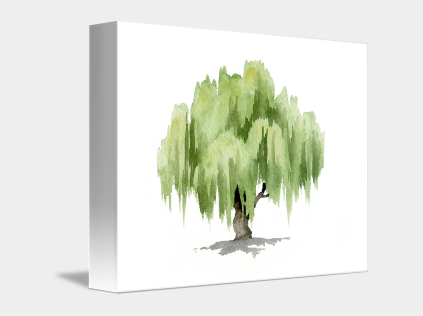 willow tree clipart, Cartoons - Willow Tree By David Rogers - Willow Tree Watercolor Painting