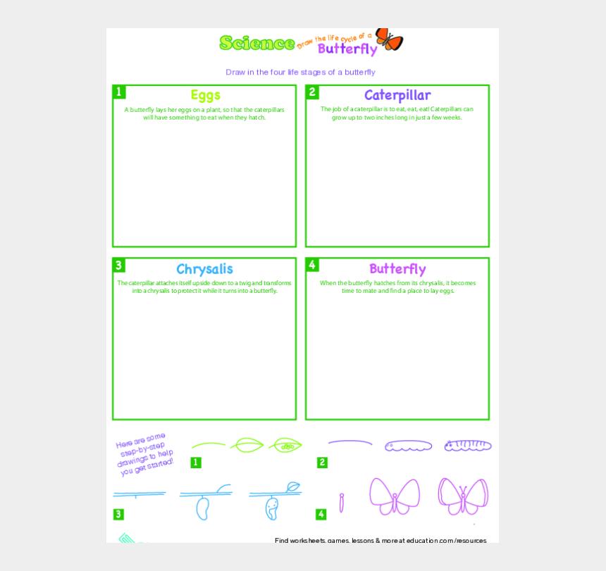 pumpkin life cycle clipart, Cartoons - Plant Life Cycle Pumpkins Lesson Plan Education - Avengers Fanfiction Stucky