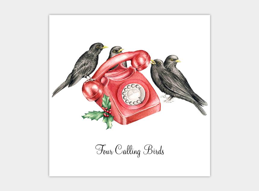four calling birds clipart, Cartoons - On The 12 Days Of Christmas Lyrics - Old World Flycatcher