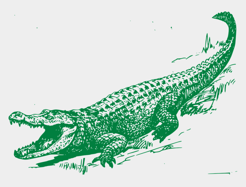 see you later alligator clipart, Cartoons - Alligator Graphic - Alligator Free