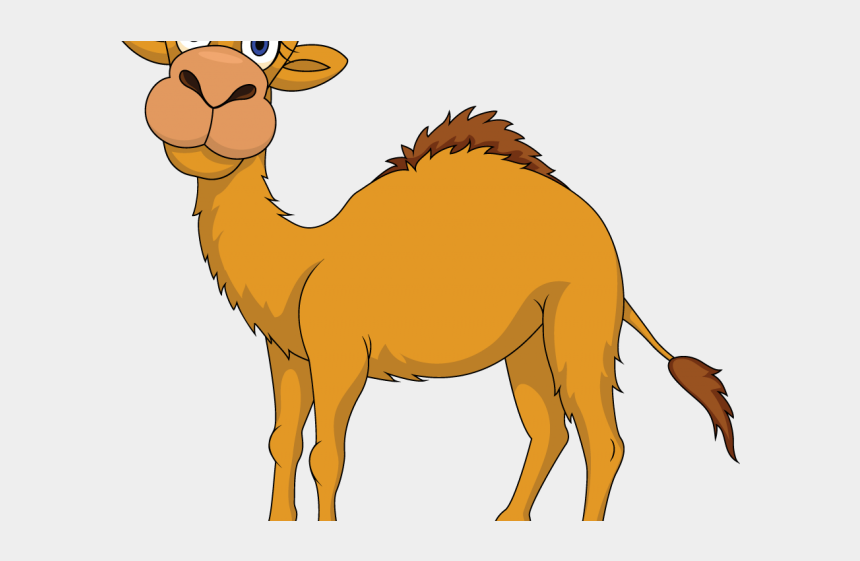 elliptical clipart, Cartoons - Camel Clipart Uae Camel - Camel And The Baby Story