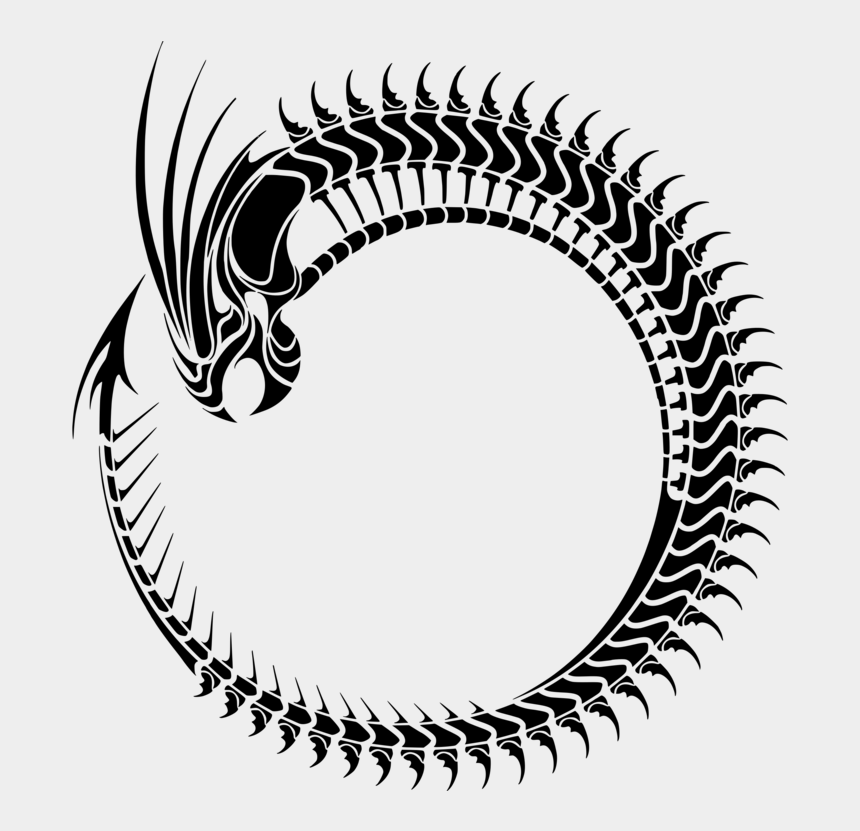 dragon eye clipart, Cartoons - Ouroboros Chinese Dragon Symbol Computer Icons - Dragon Tribal Tattoo