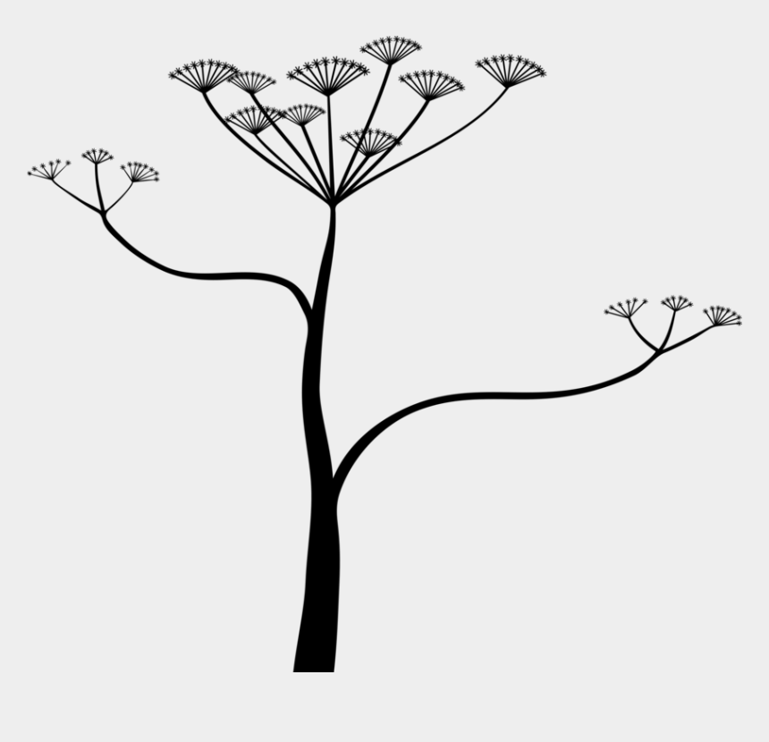 hemlock tree clipart, Cartoons - Water Hemlocks Plante Toxique Poison Computer Icons - Cicuta Png