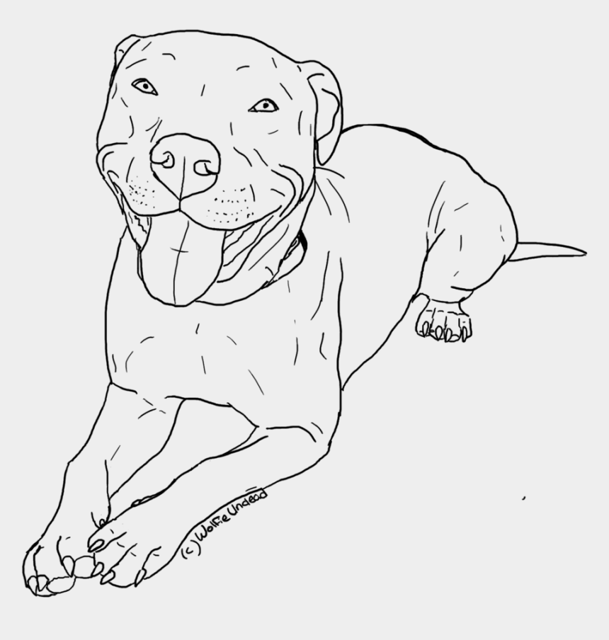 pitbull clipart, Cartoons - Pitbull Clipart Coloring Page Pencil And In Color - Red Nose Pitbull Drawing