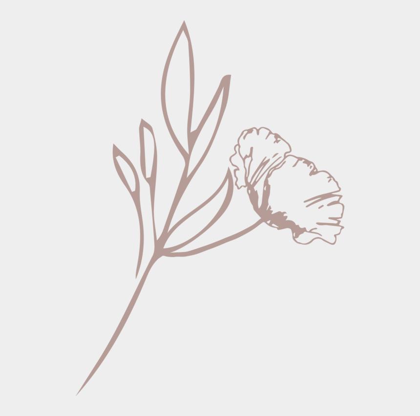 blush flower clipart, Cartoons - The Fresh Bloom Floral Mark Blush - Illustration