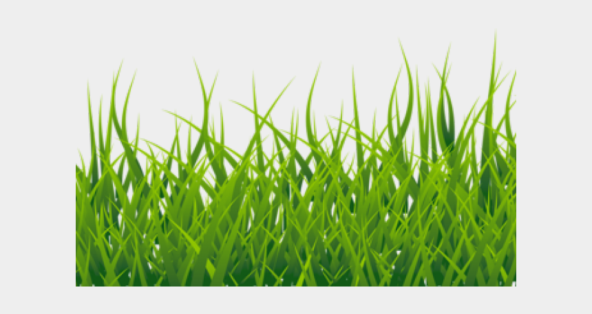 green lawn mower clipart, Cartoons - Lawn Clipart High Grass - Grass With White Background