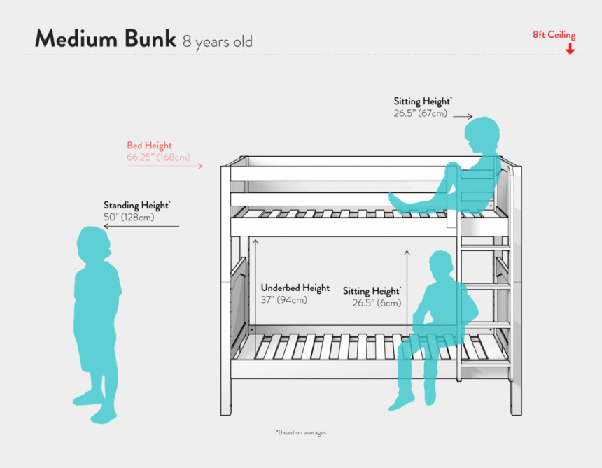 bunk beds clipart, Cartoons - Mid Bunks Can Also Easily Convert Into Play Bunks With - Height Bunk Beds Measurements