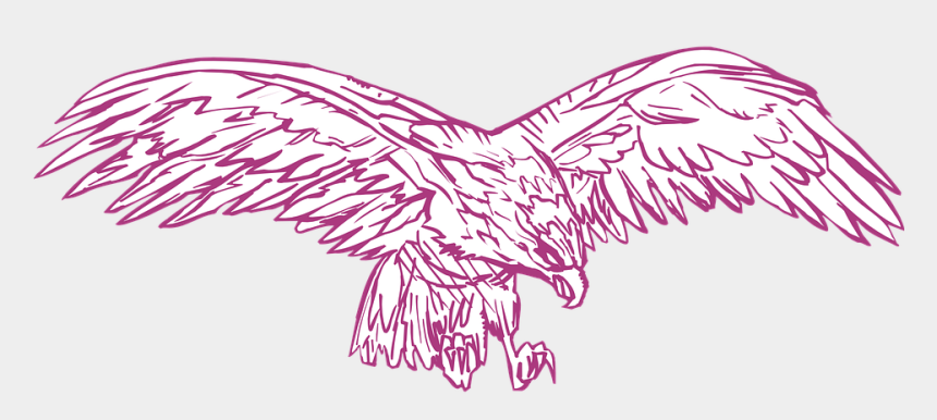 eagle wings spread clipart, Cartoons - Spread Eagle Bird Wings Hunting Feathers - Eagle In Pink With Transparent Background