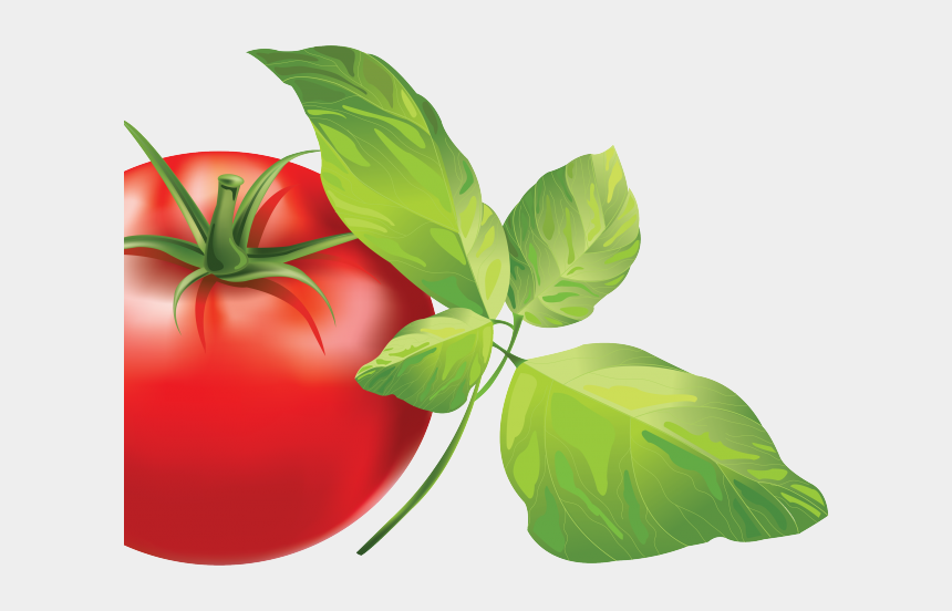 cherry tomatoes clipart, Cartoons - Cherry Tomato Clipart Transparent Background - Amici Market Logo