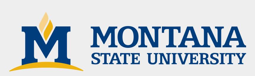 montana state clipart, Cartoons - Montana State University Emblem - Montana State University Logo No Background
