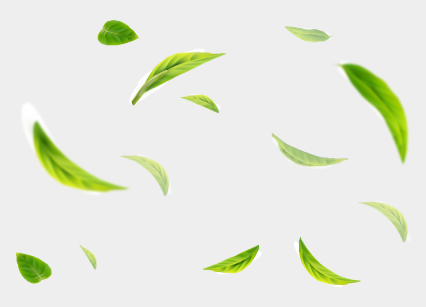 soy milk clipart, Cartoons - Green Tea Flavour