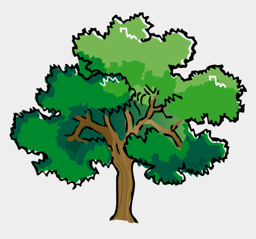 blt clipart, Cartoons - Clipart Of Trees, Douglas And Grove - Vector Tree Line Art