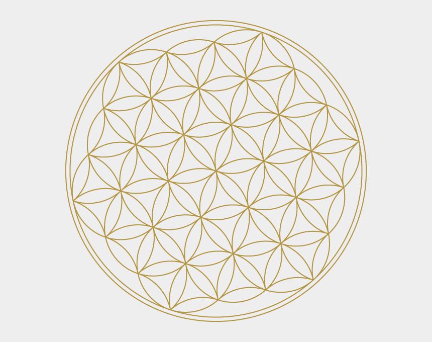 sacred geometry clipart, Cartoons - Flower Of Life - High Resolution Sacred Geometry Flower Of Life