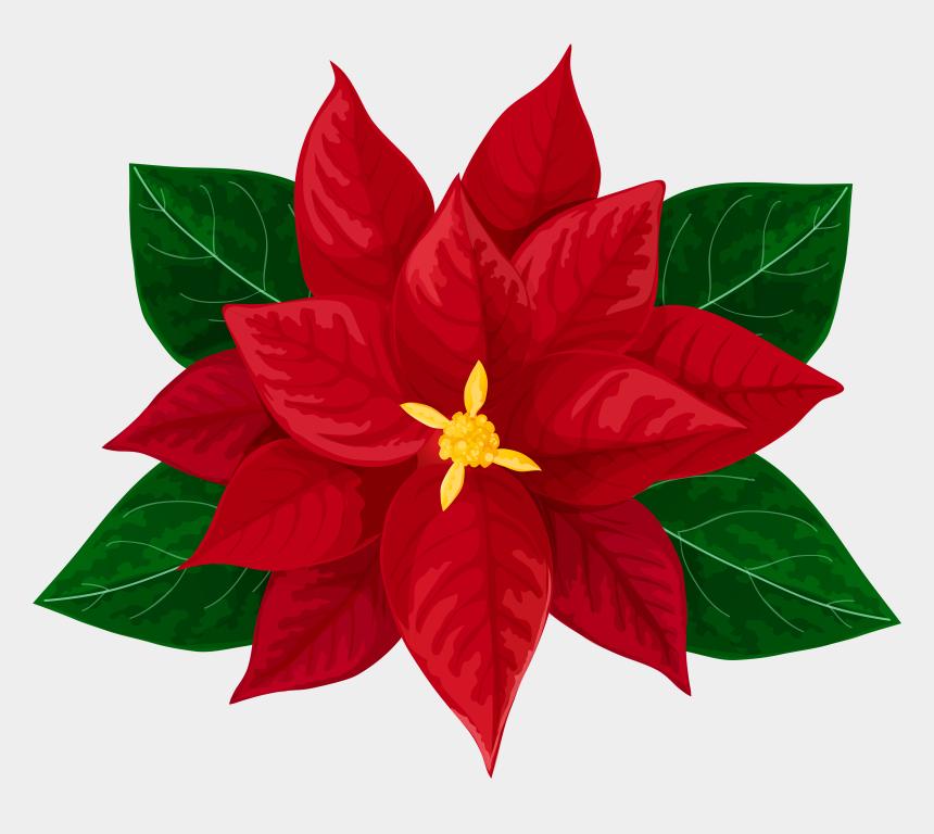 mitten clipart, Cartoons - Kisspng Poinsettia Drawing Clip Art 5ae70ed73e4b90 - Transparent Christmas Flower Clipart