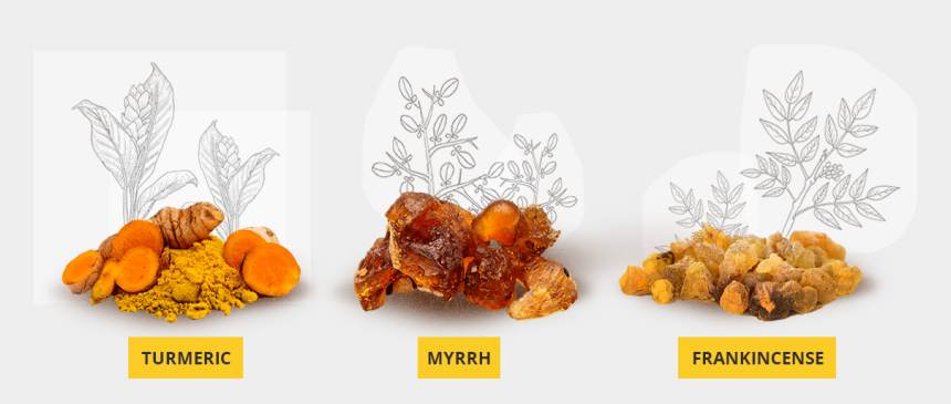 frankincense clipart, Cartoons - Together, These Three Gifts Frankincense, Myrrh, And - Date Palm